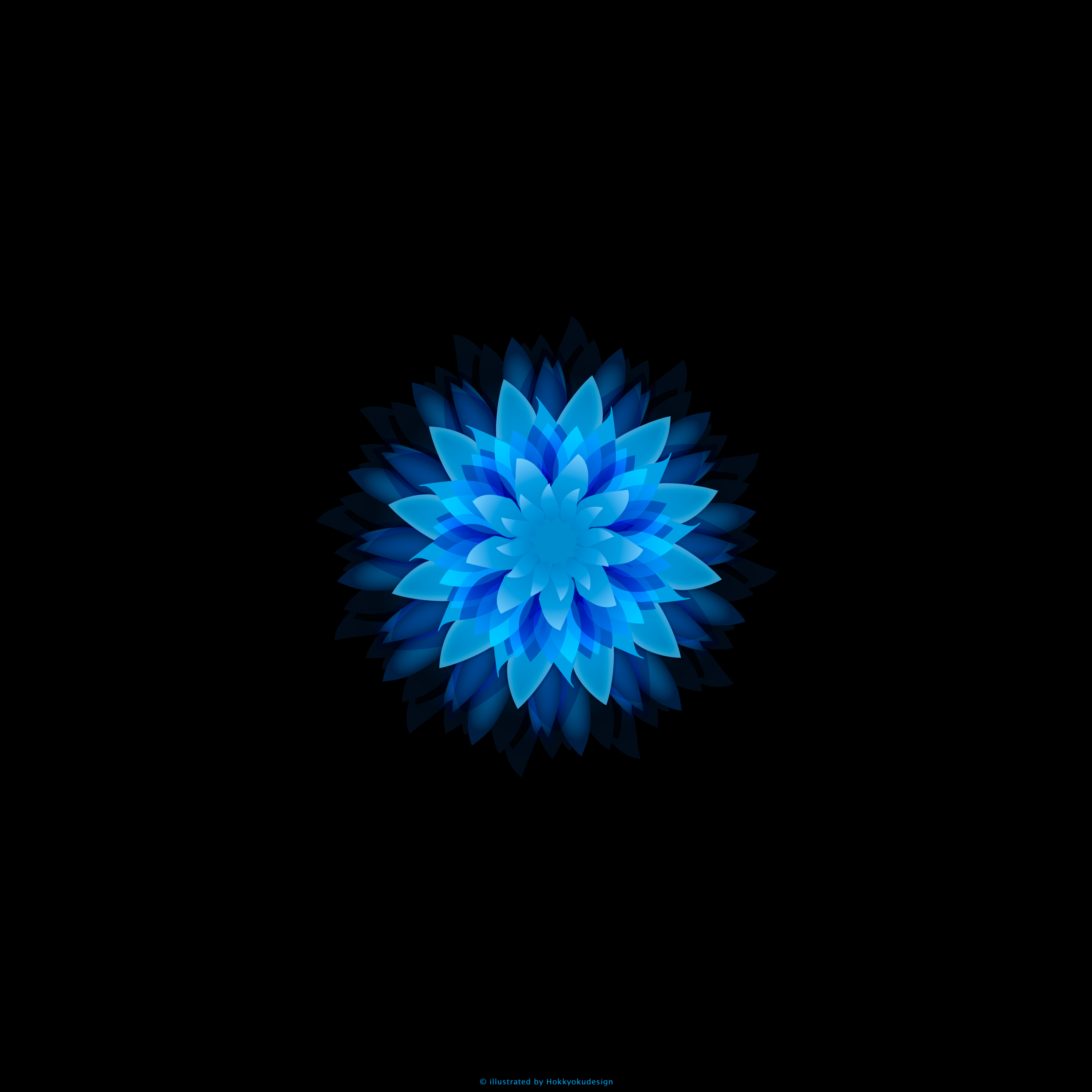Ios壁紙 Iphone6 Plus Blue Flower Ios Iphone Flower Wallpaper For