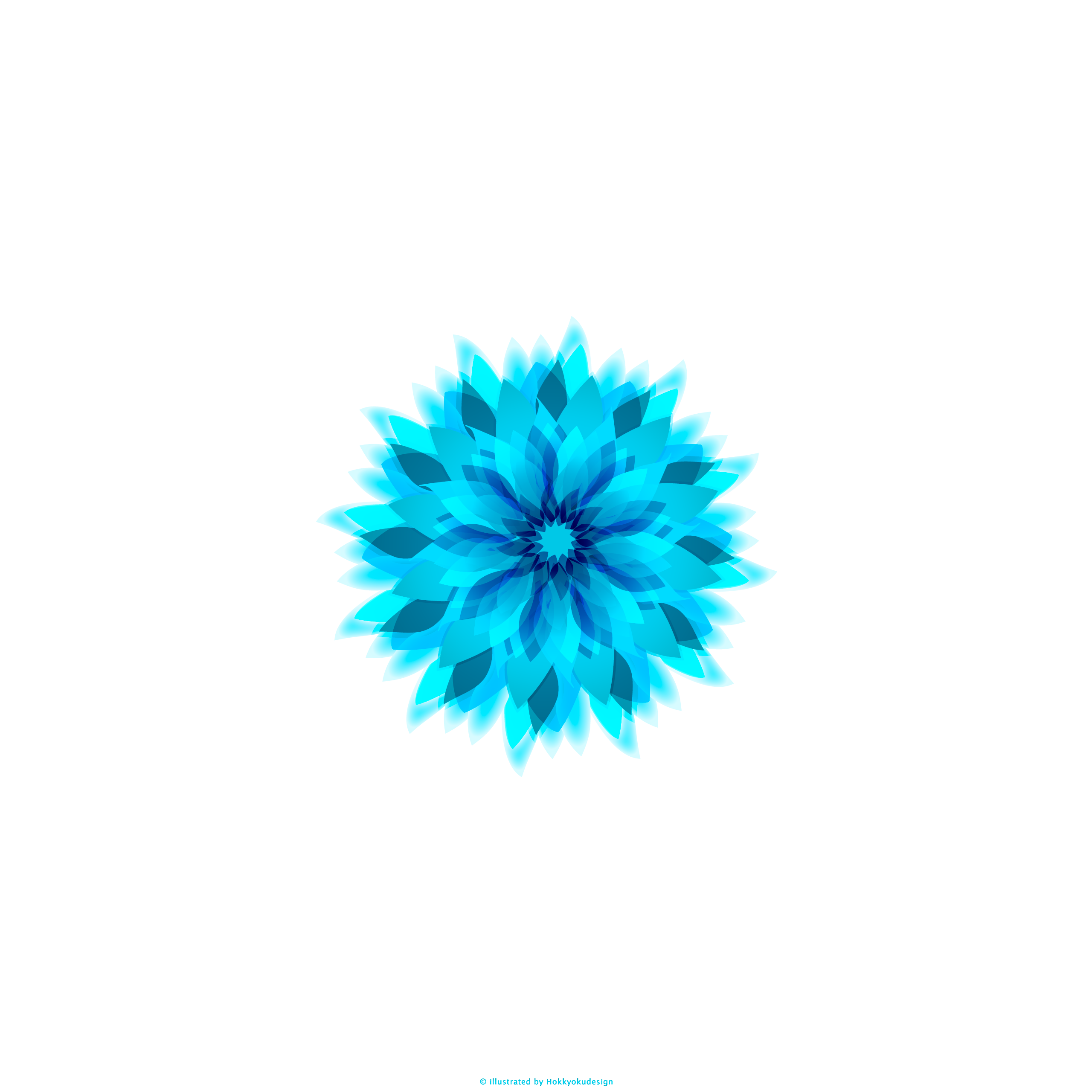 Ios壁紙 Iphone6 Plus Blue Flower With White Ios8 Iphone6 Flower