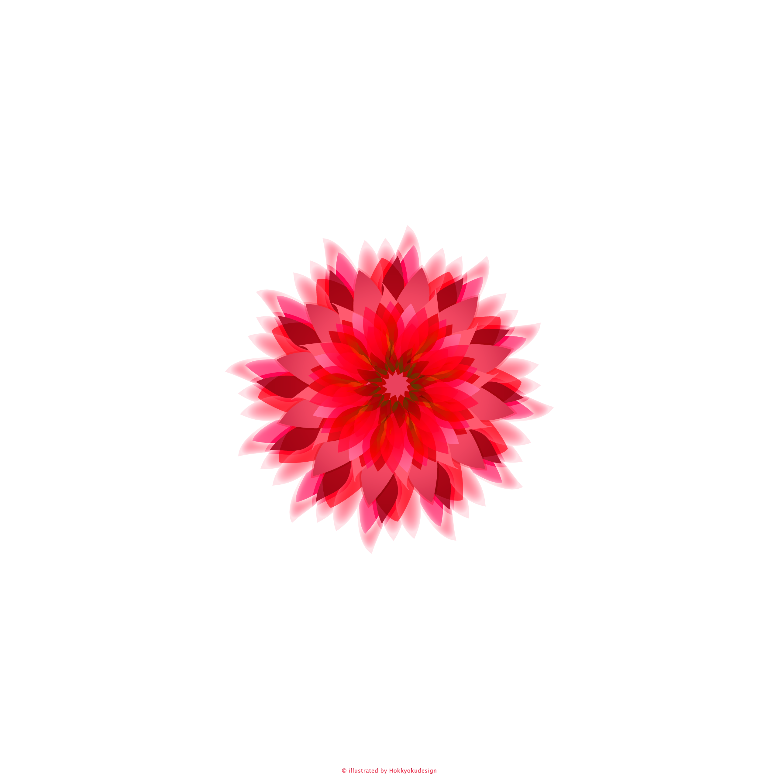 Ios壁紙 Iphone6 Plus Red Flower With White Ios8 Iphone6 Flower